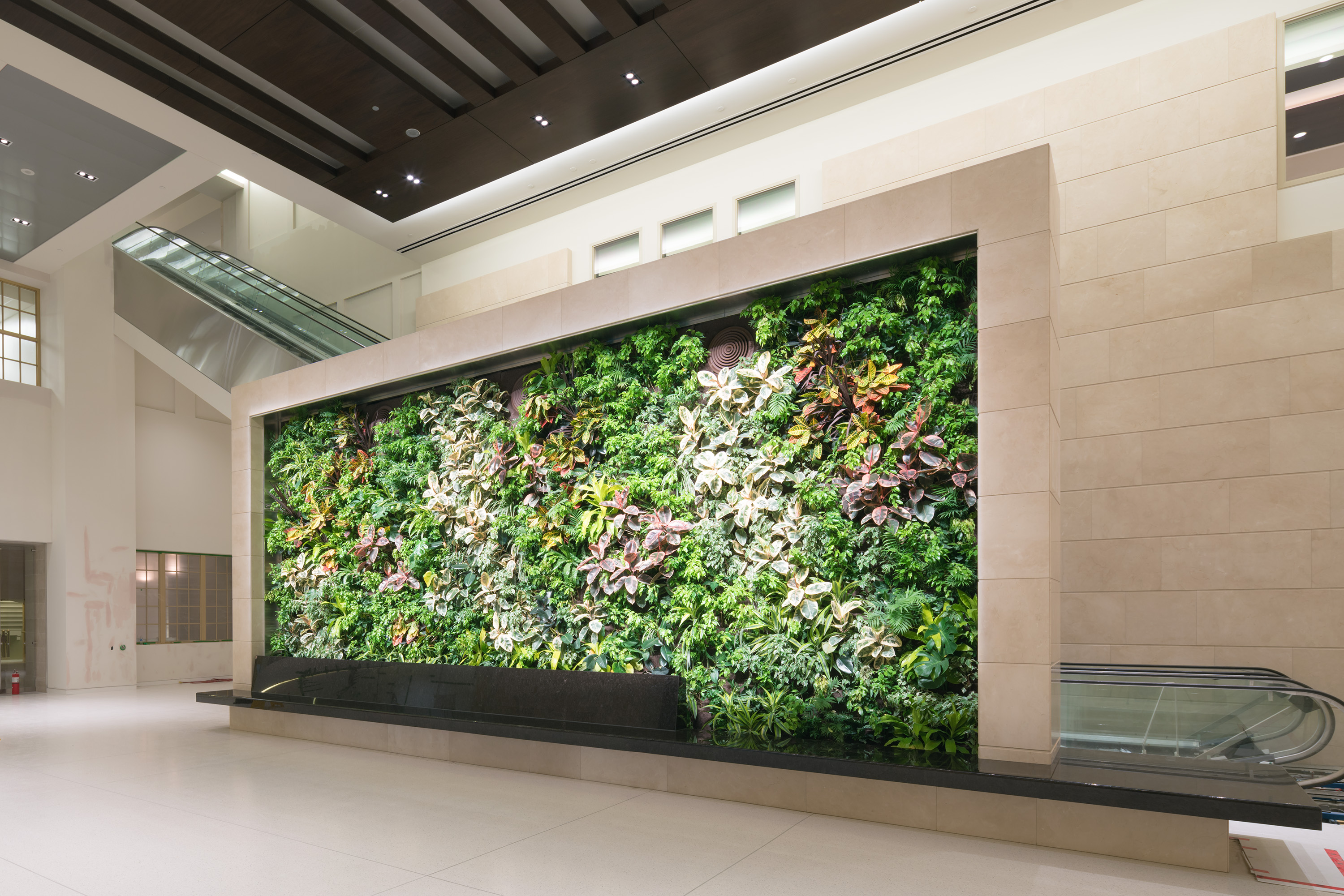 View enlarged image of the centerpiece of the atrium, a green wall of plants.