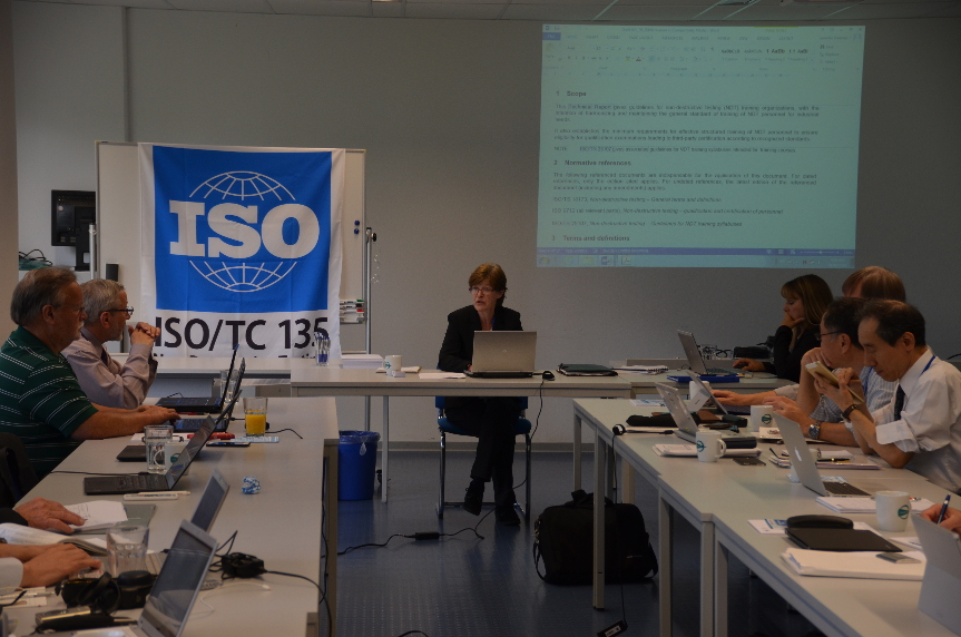 Sharon Bond of CINDE and Chair of the ISO/TC 135 Committee leads a discussion at the meetings